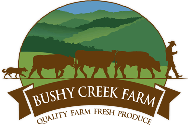 Bushy Creek Farm